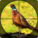 Pheasant Shooter Crossbow Birds Hunting FPS Games MOD Unlimited Money 1.1