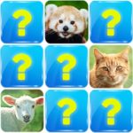 Memory Game Animals MOD Unlimited Money 6.3