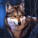 Wolf Jigsaw Puzzles MOD Unlimited Money