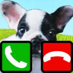 fake call dog game 2 (MOD, Unlimited Money) 7.0