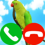 pet fake incoming call (MOD, Unlimited Money) 9.0